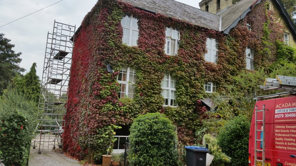 before-virginia-creeper-maintenance